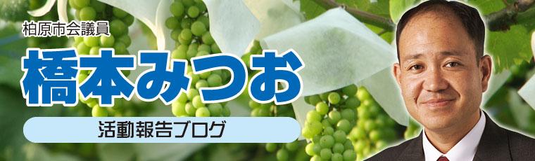 日本共産党柏原市会議員 橋本みつおのブログです。